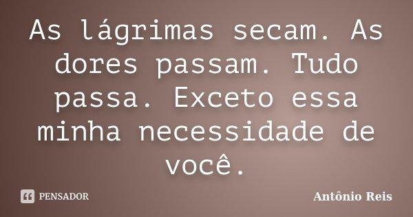 As lágrimas secam. As dores passam. Tudo passa. Exceto essa minha necessidade de você.... Frase de Antônio Reis.