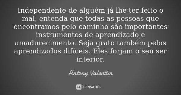 Independente de alguém já lhe ter feito o mal, entenda que todas as pessoas que encontramos pelo caminho são importantes instrumentos de aprendizado e amadureci... Frase de Antony Valentim.