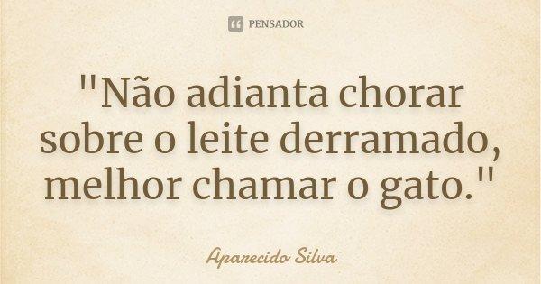 """""""Não adianta chorar sobre o leite derramado, melhor chamar o gato.""""... Frase de Aparecido Silva."""