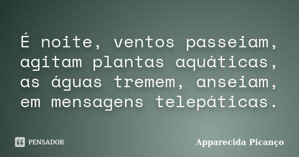 É noite, ventos passeiam, agitam plantas aquáticas, as águas tremem, anseiam, em mensagens telepáticas.... Frase de Apparecida Picanço.