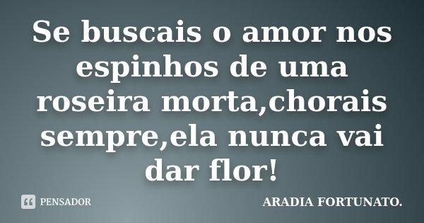 Se buscais o amor nos espinhos de uma roseira morta,chorais sempre,ela nunca vai dar flor!... Frase de Aradia FORTUNATO..