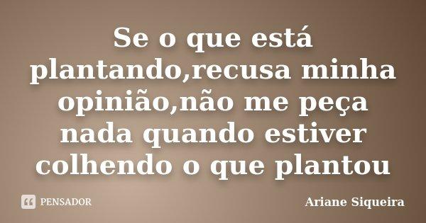 Se o que está plantando,recusa minha opinião,não me peça nada quando estiver colhendo o que plantou... Frase de Ariane Siqueira.
