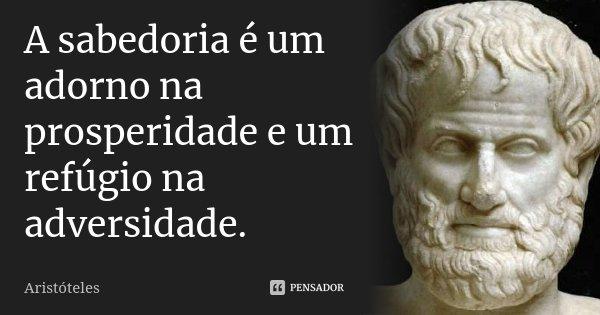 A sabedoria é um adorno na prosperidade e um refúgio na adversidade.... Frase de Aristóteles.