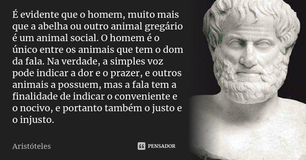 É evidente que o homem, muito mais que a abelha ou outro animal gregário é um animal social. O homem é o único entre os animais que tem o dom da fala. Na verdad... Frase de Aristóteles.