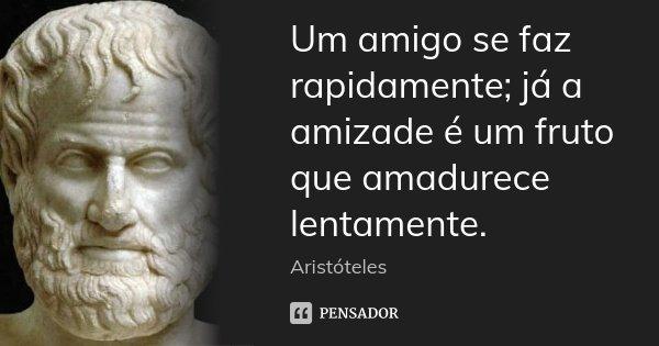 Um amigo se faz rapidamente; já a amizade é um fruto que amadurece lentamente.... Frase de Aristóteles.