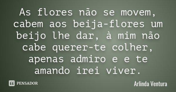 As flores não se movem, cabem aos beija-flores um beijo lhe dar, à mim não cabe querer-te colher, apenas admiro e e te amando irei viver.... Frase de Arlinda Ventura.