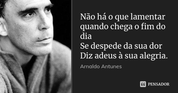 Não há o que lamentar quando chega o fim do dia Se despede da sua dor Diz adeus à sua alegria.... Frase de Arnaldo Antunes.