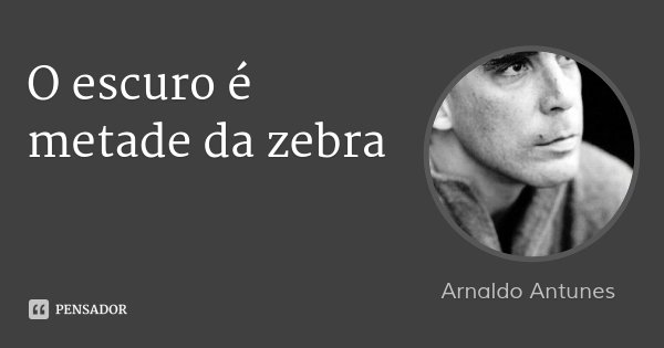 O escuro é metade da zebra... Frase de Arnaldo Antunes.