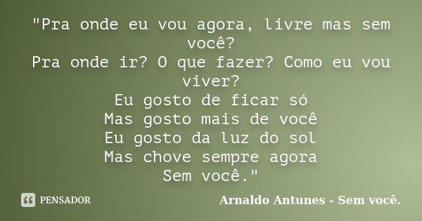 """""""Pra onde eu vou agora, livre mas sem você? Pra onde ir? O que fazer? Como eu vou viver? Eu gosto de ficar só Mas gosto mais de você Eu gosto da luz do sol... Frase de Arnaldo Antunes - Sem você.."""