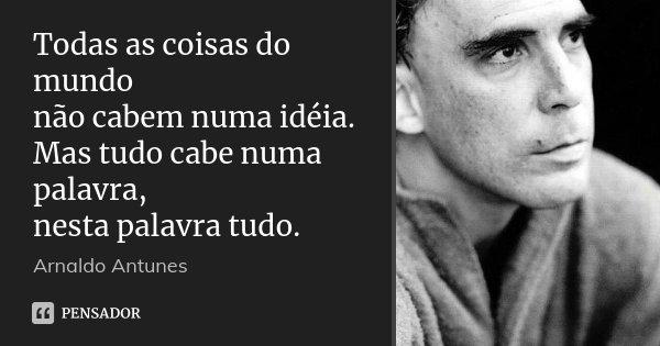Todas as coisas do mundo não cabem numa idéia. Mas tudo cabe numa palavra, nesta palavra tudo.... Frase de Arnaldo Antunes.