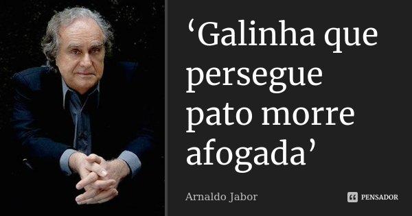 'Galinha que persegue pato morre afogada'... Frase de Arnaldo Jabor.