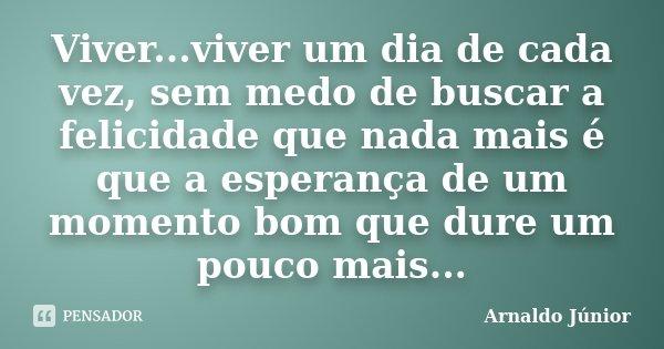 Viverviver Um Dia De Cada Vez Sem Arnaldo Júnior