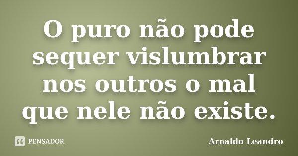 O puro não pode sequer vislumbrar nos outros o mal que nele não existe.... Frase de Arnaldo Leandro.