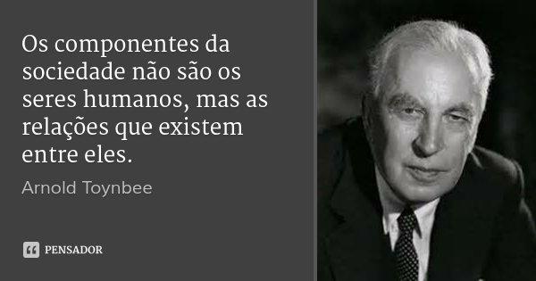 Os componentes da sociedade não são os seres humanos, mas as relações que existem entre eles.... Frase de Arnold Toynbee.