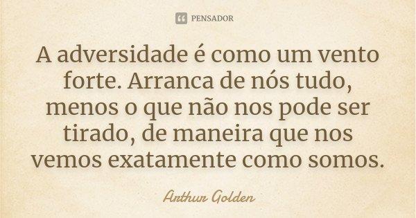A adversidade é como um vento forte. Arranca de nós tudo, menos o que não nos pode ser tirado, de maneira que nos vemos exatamente como somos.... Frase de Arthur Golden.