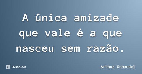 A única amizade que vale é a que nasceu sem razão.... Frase de Arthur Schendel.