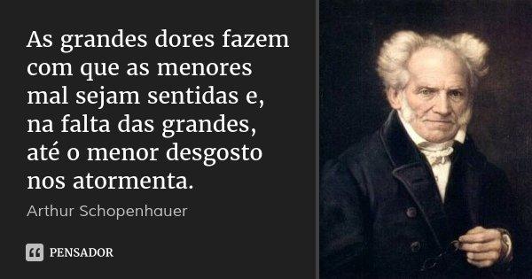 As grandes dores fazem com que as menores mal sejam sentidas e, na falta das grandes, até o menor desgosto nos atormenta.... Frase de Arthur Schopenhauer.