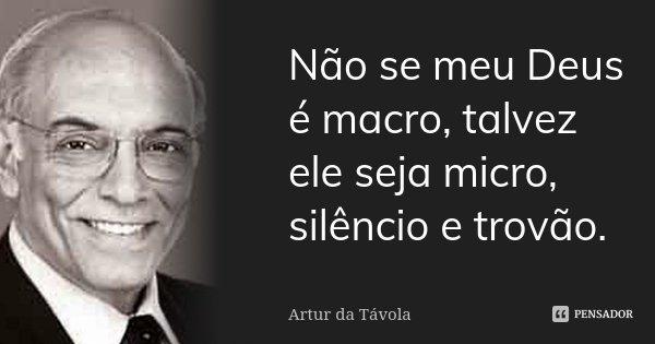 Não se meu Deus é macro, talvez ele seja micro, silêncio e trovão.... Frase de Artur da Távola.