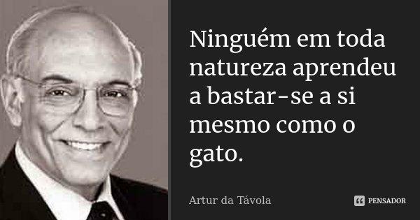Ninguém em toda natureza aprendeu a bastar-se a si mesmo como o gato.... Frase de Artur da Távola.