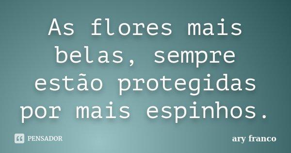 As flores mais belas, sempre estão protegidas por mais espinhos.... Frase de ary franco.