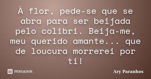 À flor, pede-se que se abra para ser beijada pelo colibri. Beija-me, meu querido amante... que de loucura morrerei por ti!... Frase de Ary Paranhos.