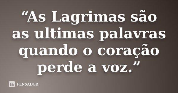 """""""As Lagrimas são as ultimas palavras quando o coração perde a voz.""""... Frase de Desconhecido."""