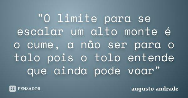 """""""O limite para se escalar um alto monte é o cume, a não ser para o tolo pois o tolo entende que ainda pode voar""""... Frase de Augusto Andrade."""