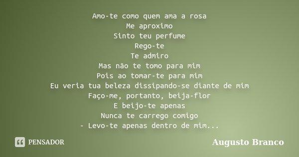 Amo-te como quem ama a rosa Me aproximo Sinto teu perfume Rego-te Te admiro Mas não te tomo para mim Pois ao tomar-te para mim Eu veria tua beleza dissipando-se... Frase de Augusto Branco.