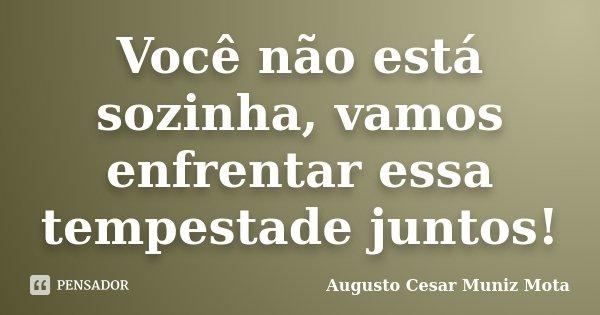 Voçe não está sozinha , vamos enfrentar essa tempestade juntos... Frase de Augusto Cesar Muniz Mota.