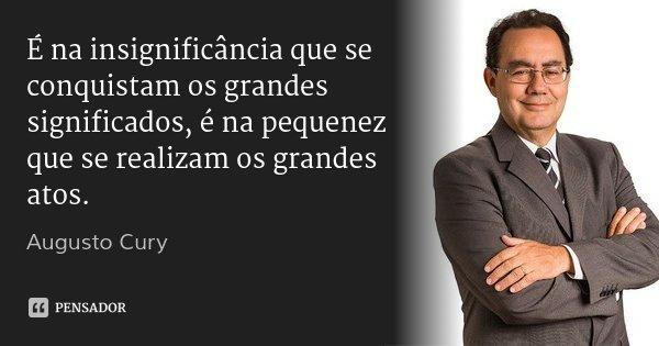 É na insignificância que se conquistam os grandes significados, é na pequenez que se realizam os grandes atos.... Frase de Augusto Cury.