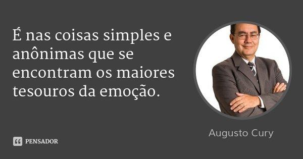 É nas coisas simples e anônimas que se encontram os maiores tesouros da emoção.... Frase de Augusto Cury.