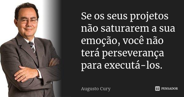 Se os seus projetos não saturarem a sua emoção, você não terá perseverança para executá-los.... Frase de Augusto Cury.
