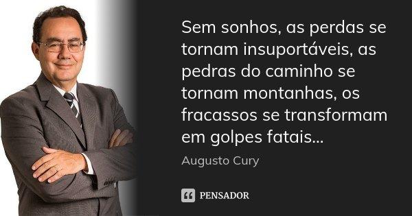 Sem sonhos, as perdas se tornam insuportáveis, as pedras do caminho se tornam montanhas, os fracassos se transformam em golpes fatais...... Frase de Augusto Cury.