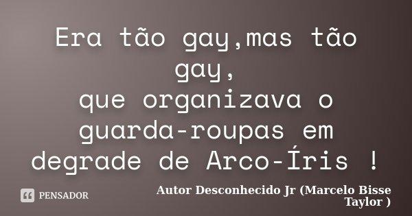 Era tão gay,mas tão gay, que organizava o guarda-roupas em degrade de Arco-Íris !... Frase de Autor Desconhecido Jr (Marcelo Bisse Taylor ).