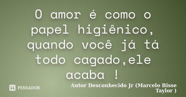 O amor é como o papel higiênico, quando você já tá todo cagado,ele acaba !... Frase de Autor Desconhecido Jr (Marcelo Bisse Taylor ).