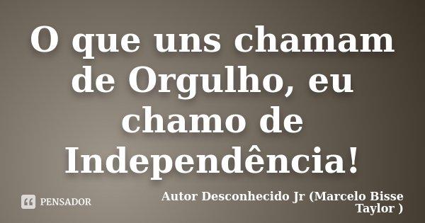 O que uns chamam de Orgulho,eu chamo de Independência !... Frase de Autor Desconhecido Jr (Marcelo Bisse Taylor).