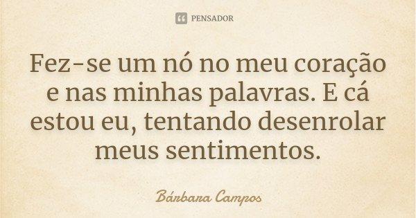 Fez-se um nó no meu coração e nas minhas palavras. E cá estou eu, tentando desenrolar meus sentimentos.... Frase de Bárbara Campos.