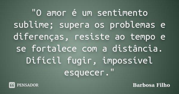 """""""O amor é um sentimento sublime; supera os problemas e diferenças, resiste ao tempo e se fortalece com a distância. Difícil fugir, impossível esquecer.&quo... Frase de Barbosa Filho."""