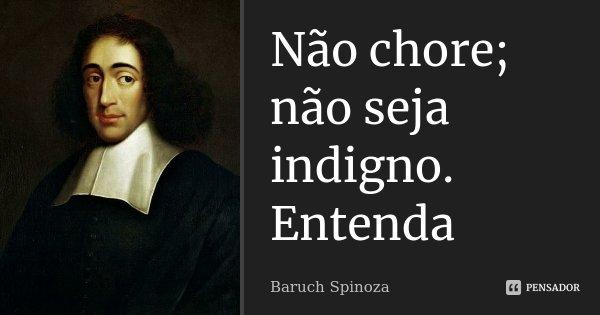 Não chore; não seja indigno. Entenda... Frase de Baruch Spinoza.