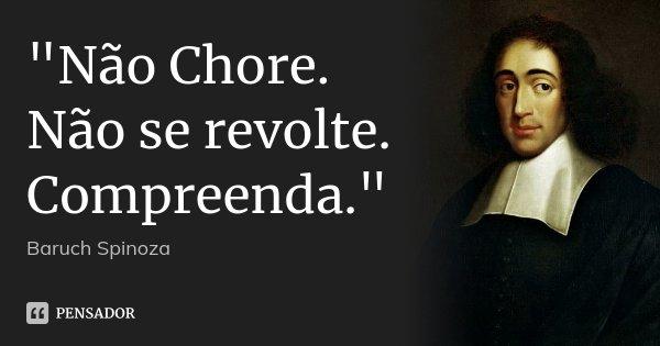 """""""Não Chore. Não se revolte. Compreenda.""""... Frase de Baruch Spinoza."""