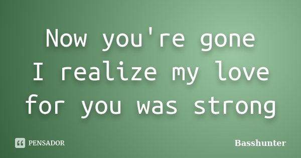 Now you're gone I realize my love for you was strong... Frase de Basshunter.