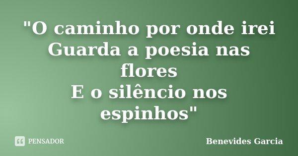 """""""O caminho por onde irei Guarda a poesia nas flores E o silêncio nos espinhos""""... Frase de Benevides Garcia."""
