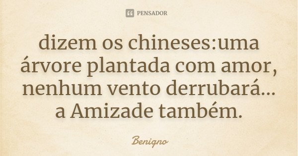 dizem os chineses:uma árvore plantada com amor, nenhum vento derrubará... a Amizade também.... Frase de Benigno.