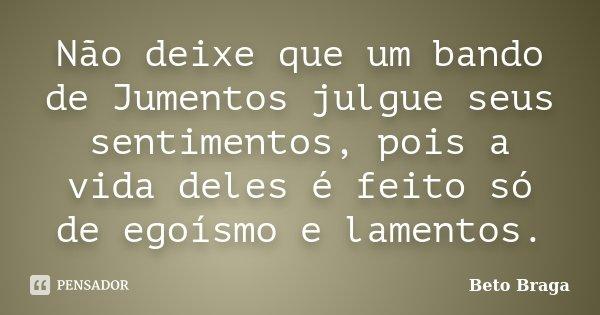 Não deixe que um bando de Jumentos julgue seus sentimentos, pois a vida deles é feito só de egoísmo e lamentos.... Frase de Beto Braga.