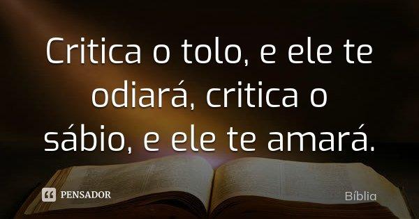 Critica o tolo, e ele te odiará, critica o sábio, e ele te amará.... Frase de Bíblia.