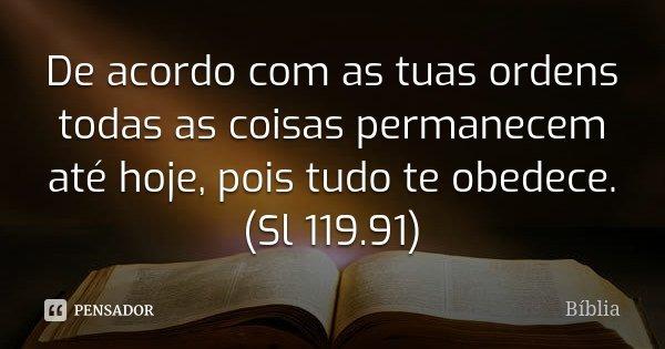 De acordo com as tuas ordens todas as coisas permanecem até hoje, pois tudo te obedece. (Sl 119.91)... Frase de Bíblia.
