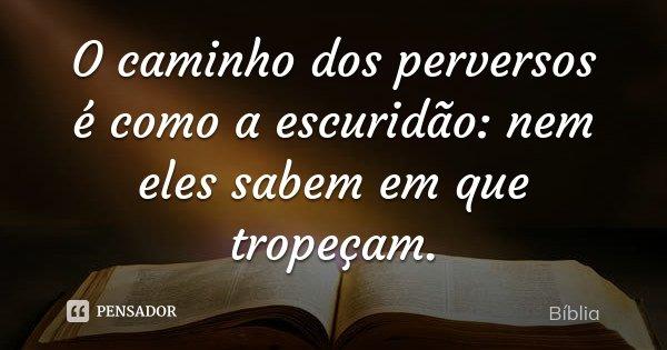 O caminho dos perversos é como a escuridão: nem eles sabem em que tropeçam.... Frase de Bíblia.