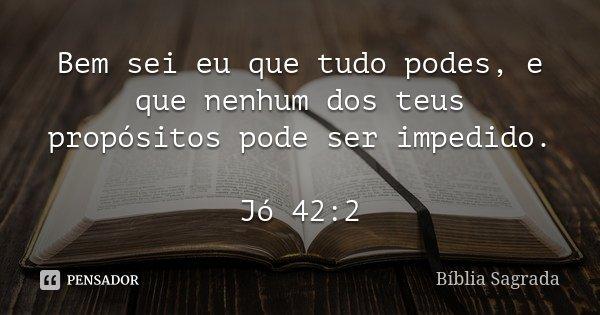 Bem sei eu que tudo podes, e que nenhum dos teus propósitos pode ser impedido. Jó 42:2... Frase de Bíblia Sagrada.
