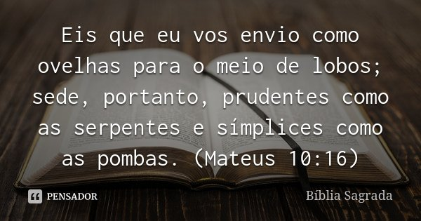 Eis que eu vos envio como ovelhas para o meio de lobos; sede, portanto, prudentes como as serpentes e símplices como as pombas. (Mateus 10:16)... Frase de Bíblia Sagrada.