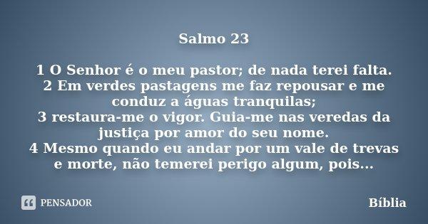 Salmos Para O Amor: Salmo 23 1 O Senhor é O Meu Pastor; De... Bíblia